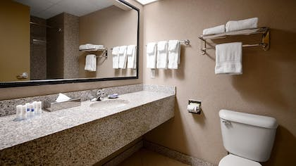 Bathroom | Best Western Plus Sandusky Hotel & Suites