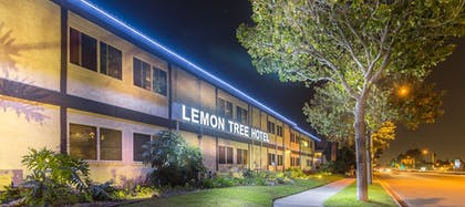 Exterior | Lemon Tree Hotel & Suites Anaheim