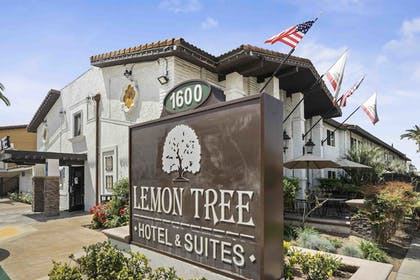 Hotel Entrance | Lemon Tree Hotel & Suites Anaheim
