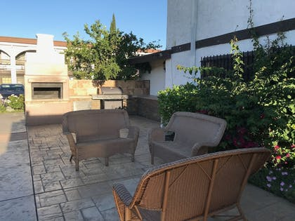 BBQ/Picnic Area | Lemon Tree Hotel & Suites Anaheim