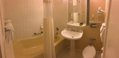 Bathroom | Arlington Resort Hotel and Spa