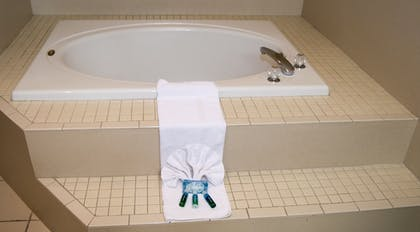 In-Room Amenity | Holiday Inn Express Hotel & Suites Clearwater/Us 19 N