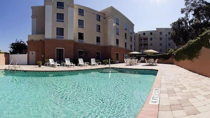 Outdoor Pool | Holiday Inn Express Hotel & Suites Clearwater/Us 19 N