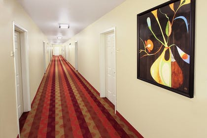 Hotel Interior | TownePlace Suites by Marriott San Jose Campbell
