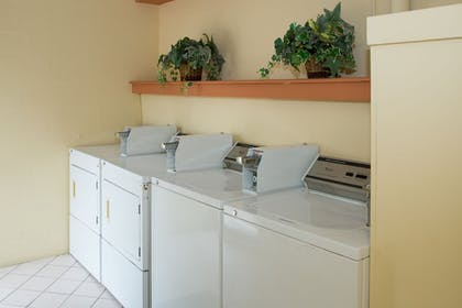 Laundry Room | Tropical Beach Resorts