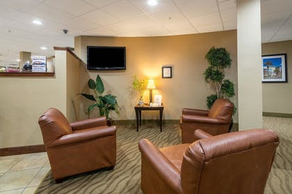Lobby | Comfort Suites Panama City Beach