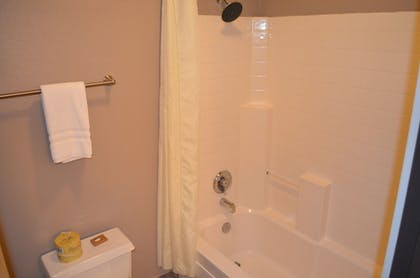 Bathroom Shower | The Ashley Inn & Suites