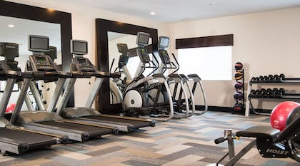 Fitness Facility | Holiday Inn Express Le Claire Riverfront-Davenport