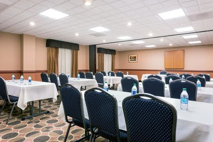 Meeting Facility | Wingate by Wyndham Athens Near Downtown