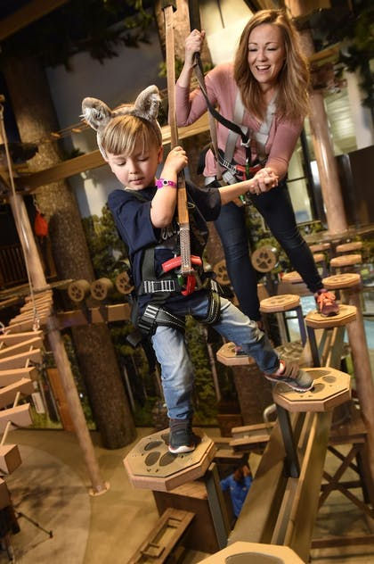 Ropes Course (Team Building) | Great Wolf Lodge Bloomington