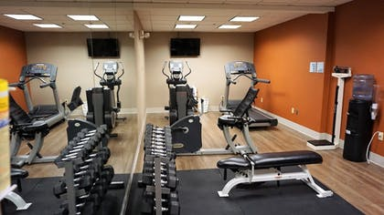 Fitness Facility | Holiday Inn Express Hotel & Suites Gibson