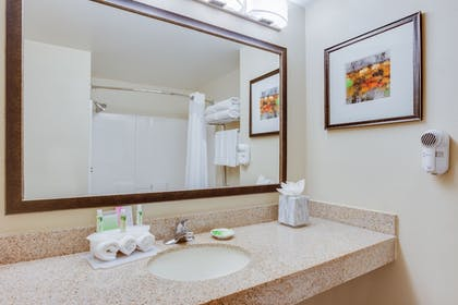In-Room Amenity | Holiday Inn Express I-95 Capitol Beltway-Largo