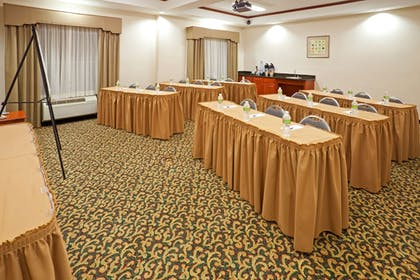 Meeting Facility | Holiday Inn Express Hotel & Suites Dallas-Grand Prairie I-20