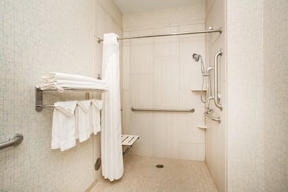 Bathroom | Holiday Inn Express Hotel & Suites Ft. Collins