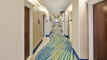 Interior Detail | Best Western Plus Houston Atascocita Inn & Suites