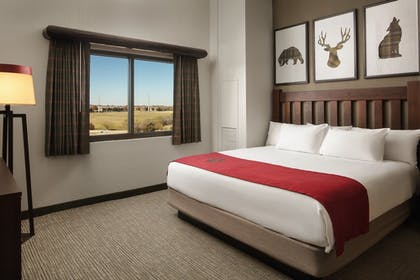 Guestroom | Great Wolf Lodge Pocono Mountains, PA