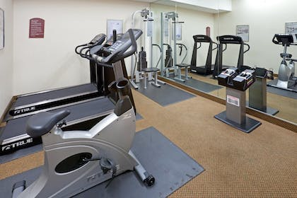 Fitness Facility | Holiday Inn Express Hotel & Suites Decatur