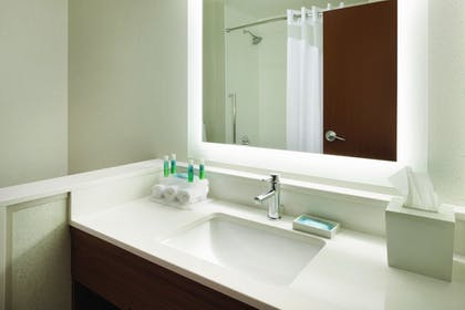 Bathroom | Holiday Inn Express Knoxville-Strawberry Plains