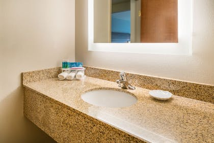 Bathroom | Holiday Inn Express Hotel & Suites Rocky Mount