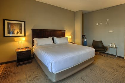Guestroom | Holiday Inn Express Hotel & Suites Pell City