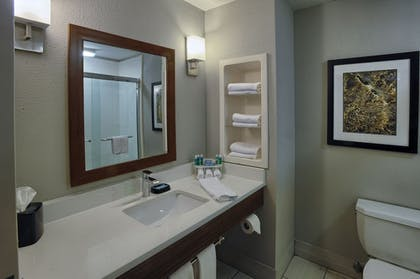 In-Room Amenity   Holiday Inn Express Hotel & Suites Pell City