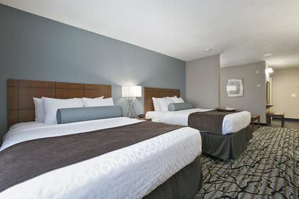 Guestroom | Best Western Plus Blaine at the National Sports Center