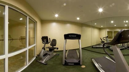 Fitness Facility | Holiday Inn Express Hotel & Suites Brooksville West