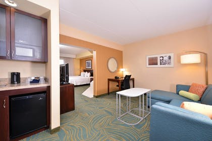 In-Room Kitchenette   SpringHill Suites by Marriott Arundel Mills BWI Airport