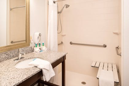 Bathroom | Holiday Inn Express Hotel & Suites Alamogordo Hwy 54/70