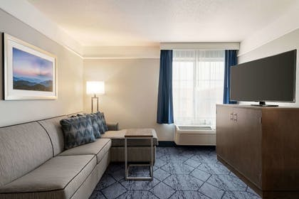 Room | La Quinta Inn & Suites by Wyndham Rapid City
