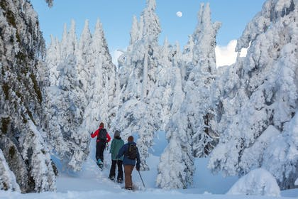 Snowshoeing | The Lodge at Eagle Crest Resort