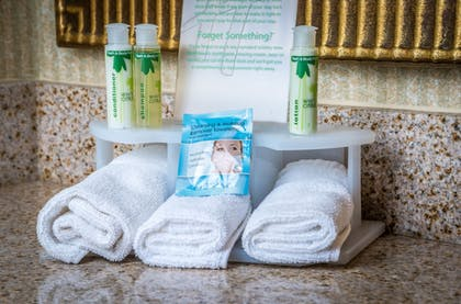 Bathroom Amenities | Holiday Inn Express & Suites Gunnison