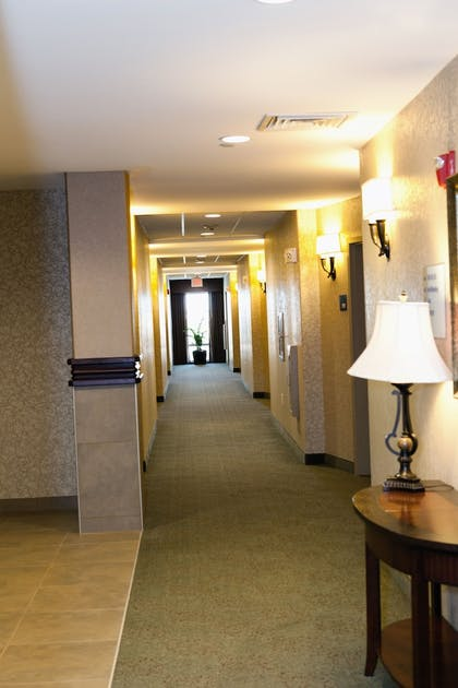Hallway   Holiday Inn Express and Suites Springfield Medical District