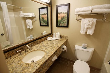 Bathroom | C'mon Inn Hotel & Suites