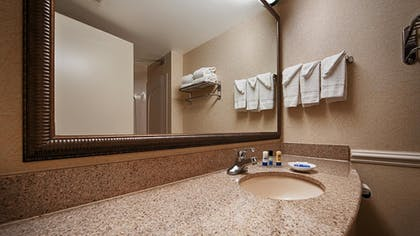 Bathroom | Best Western Riverview Inn & Suites