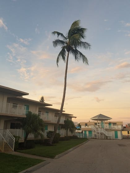 Front of Property - Evening/Night   Carousel Inn on the Beach