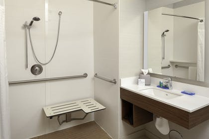 Bathroom Shower | Holiday Inn Express & Suites Interstate 90