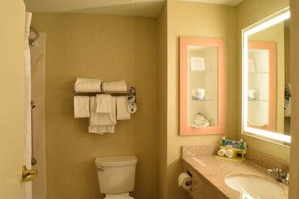 Bathroom | Holiday Inn Express Hotel & Suites Watertown-Thousand Island