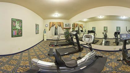 Gym | Holiday Inn Express Hotel & Suites Sherman Highway 75