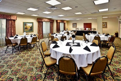 Banquet Hall | Holiday Inn & Suites Ann Arbor Univ Michigan Area
