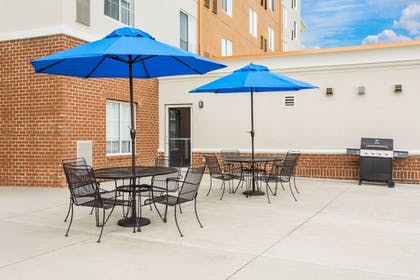 BBQ/Picnic Area | Holiday Inn Express Petersburg