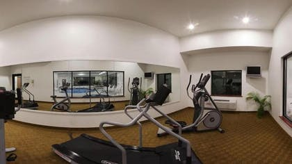 Fitness Facility | Holiday Inn Express Hotel & Suites ELKINS