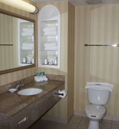 In-Room Amenity | Holiday Inn Express Hotel & Suites Spring Hill