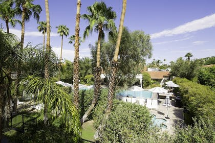 Guestroom View | Colony Palms Hotel