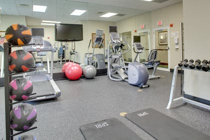 Sports Facility | Holiday Inn Express & Suites Kendall
