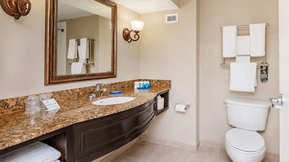 Bathroom | Holiday Inn Express & Suites Kendall