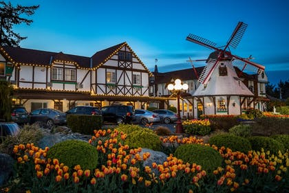 Featured Image | Auld Holland Inn