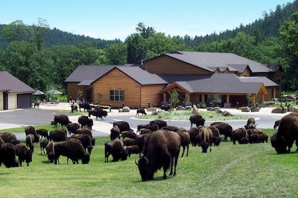 Hotel Front | State Game Lodge at Custer State Park Resort