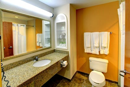 Bathroom | Holiday Inn Express Hotel & Suites Silver Springs - Ocala