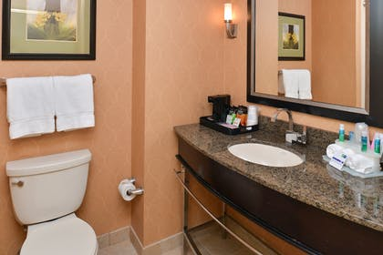 Bathroom | Holiday Inn Express Hotel & Suites Dallas South - Desoto